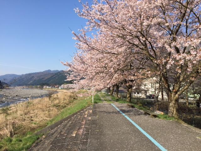 道の駅くつき新本陣春の風景
