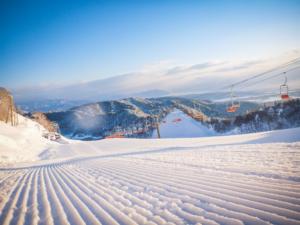 朽木スキー場webサイトリニューアル