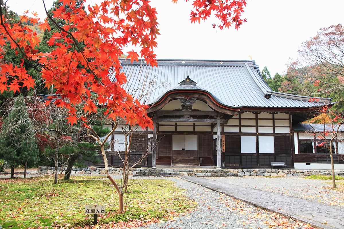 興聖寺(過去に撮影)