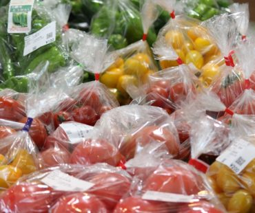 夏野菜で夏バテ防止を